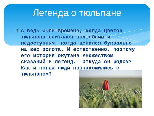 Аведь были времена, когда цветок тюльпана считался волшебным и недоступным,...