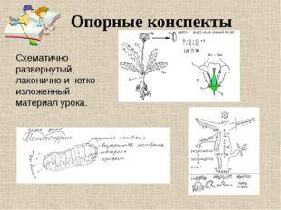 Опорные конспекты Схематично развернутый, лаконично и четко изложенный матери