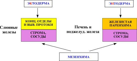hello_html_m4a79a141.jpg