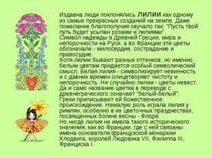 Издавна люди поклонялись лилии как одному из самых прекрасных созданий на зем