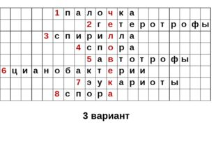 3 вариант 1палочка 2гетеротрофы 3с