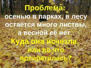 Проблема: осенью в парках, в лесу остаётся много листвы, а весной её нет. Куд