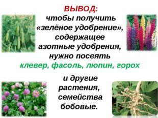 ВЫВОД: чтобы получить «зелёное удобрение», содержащее азотные удобрения, нужн