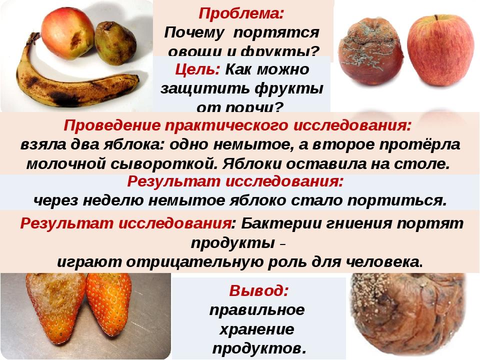 Проблема: Почему портятся овощи и фрукты? Результат исследования: через недел...