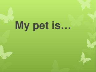 My pet is…