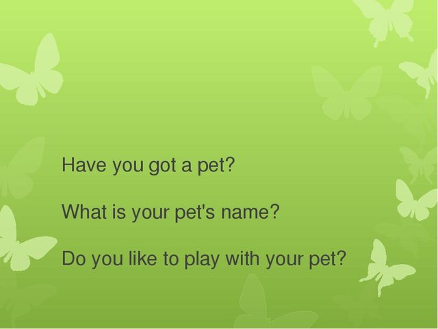 Have you got a pet? What is your pet's name? Do you like to play with your pet?