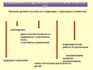 индивидуальная работа по различным направлениям развития воспитанников; Прогу