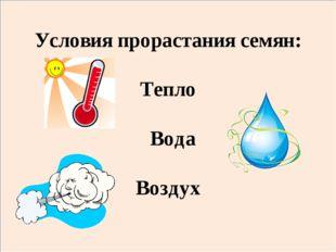 Условия прорастания семян: Тепло Вода Воздух