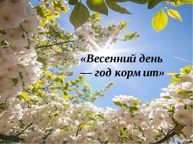 «Весенний день — год кормит»