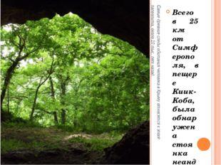 Самые древние следы обитания человека в Крыму относятся к эпохе палеолита, ок