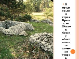 В предгорьях и горах Крыма, на Южном берегу, обосновались племена тавров, пе