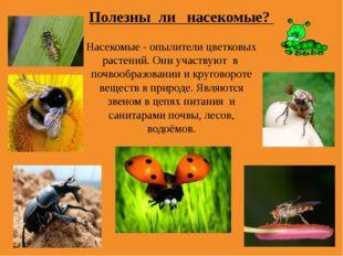 Насекомые - опылители цветковых растений. Они участвуют в почвообразовании и