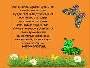 Как и любое другое существо в мире, насекомые нуждаются в тщательном их изуче