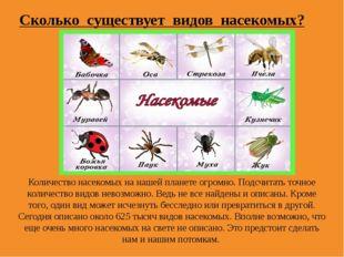Количество насекомых на нашей планете огромно. Подсчитать точное количество в