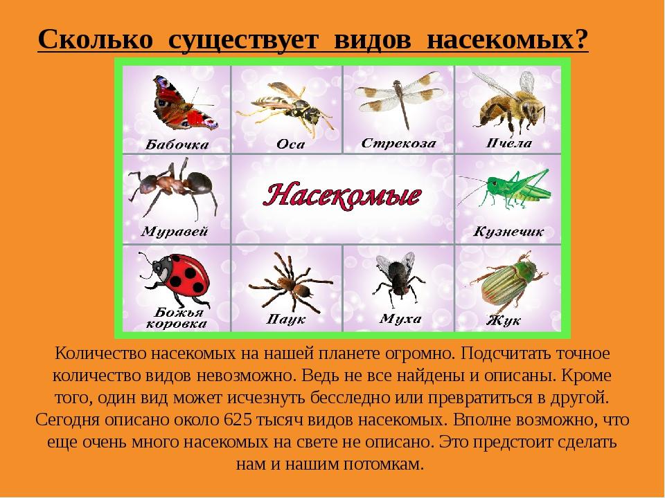 Количество насекомых на нашей планете огромно. Подсчитать точное количество в...