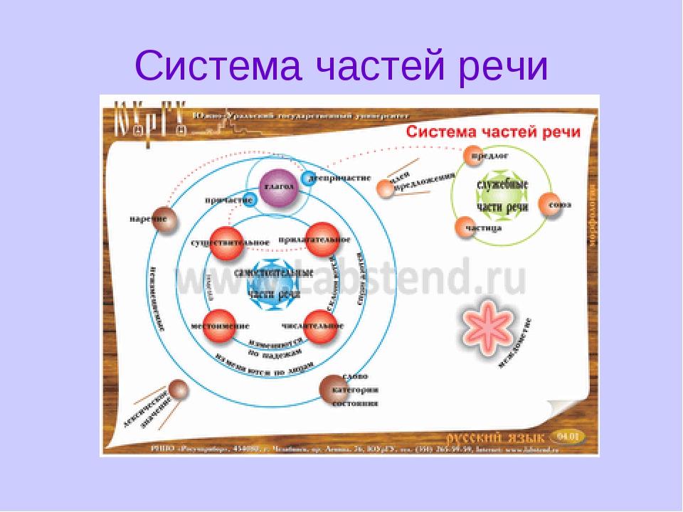 Система частей речи