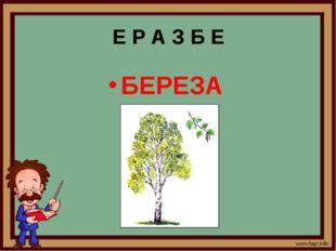 Е Р А З Б Е БЕРЕЗА