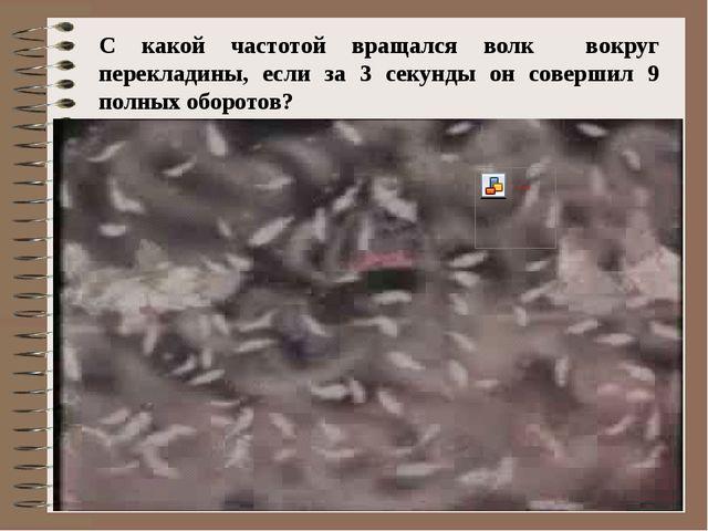 С какой частотой вращался волк вокруг перекладины, если за 3 секунды он совер...