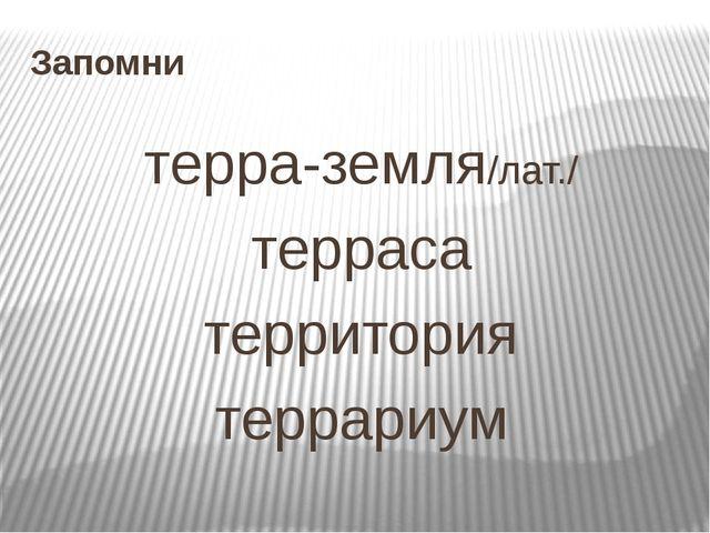 Запомни терра-земля/лат./ терраса территория террариум