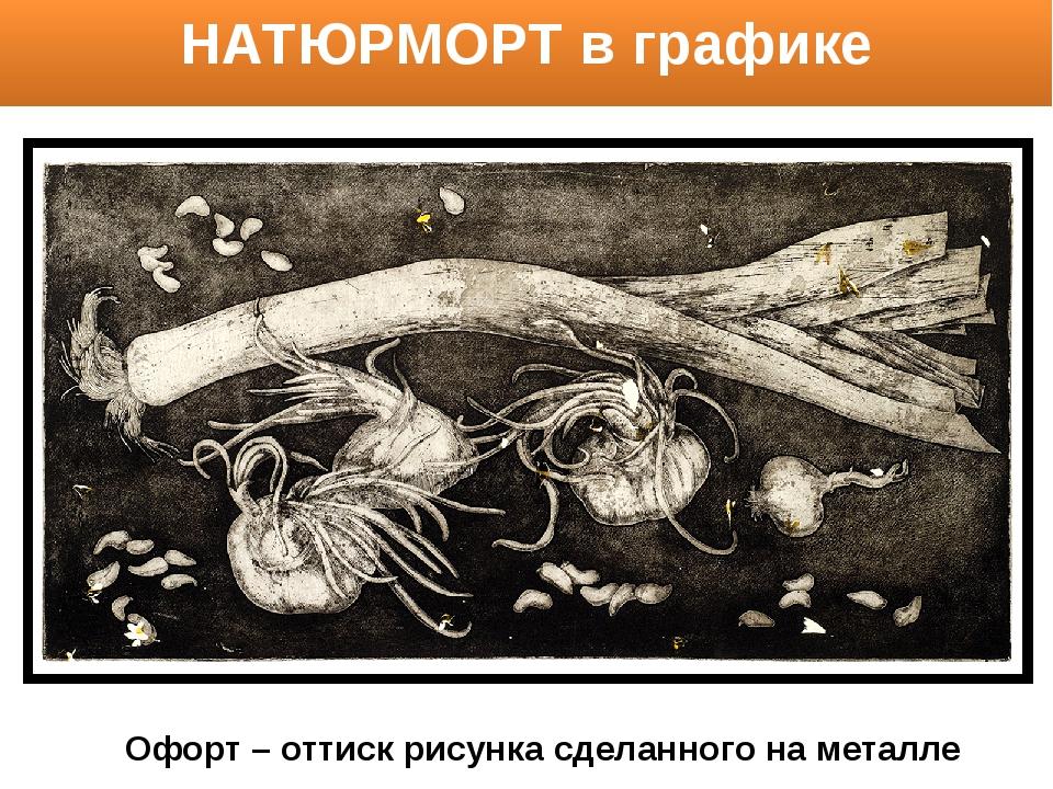 НАТЮРМОРТ в графике Офорт – оттиск рисунка сделанного на металле