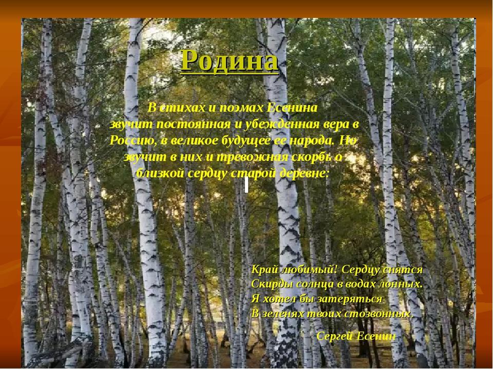 Родина Родина В стихах и поэмах Есенина звучит постоянная и убежденная вера в...