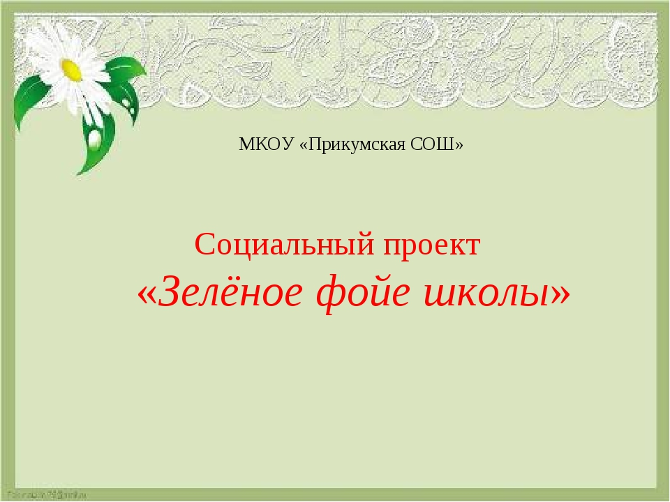 МКОУ «Прикумская СОШ» Социальный проект «Зелёное фойе школы»