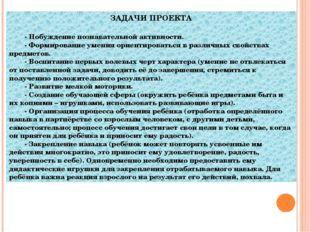 ЗАДАЧИ ПРОЕКТА - Побуждение познавательной активности. - Формирование умени
