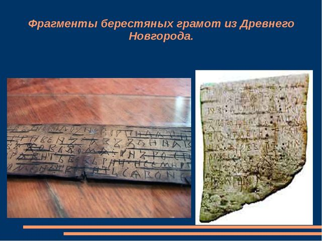 Фрагменты берестяных грамот из Древнего Новгорода.