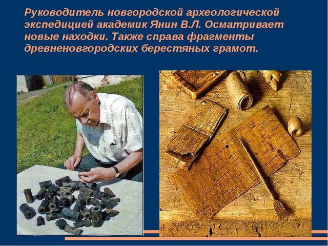 Руководитель новгородской археологической экспедицией академик Янин В.Л. Осма...