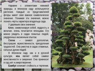 Наравне с элементами неживой природы, в японском саду используются растения.