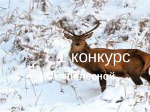 1 конкурс «скачи лесной олень»