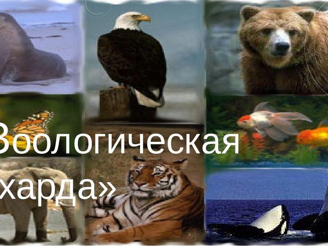 «Зоологическая чехарда»