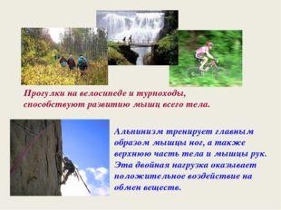 Прогулки на велосипеде и турпоходы, способствуют развитию мышц всего тела. Ал