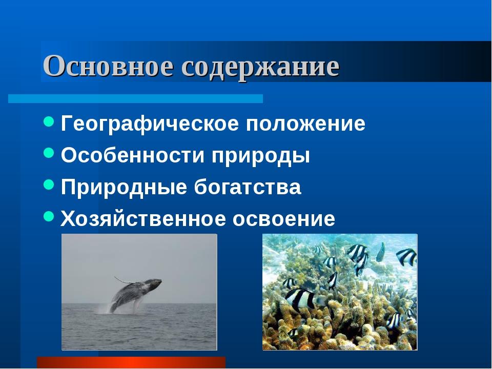 Основное содержание Географическое положение Особенности природы Природные бо...