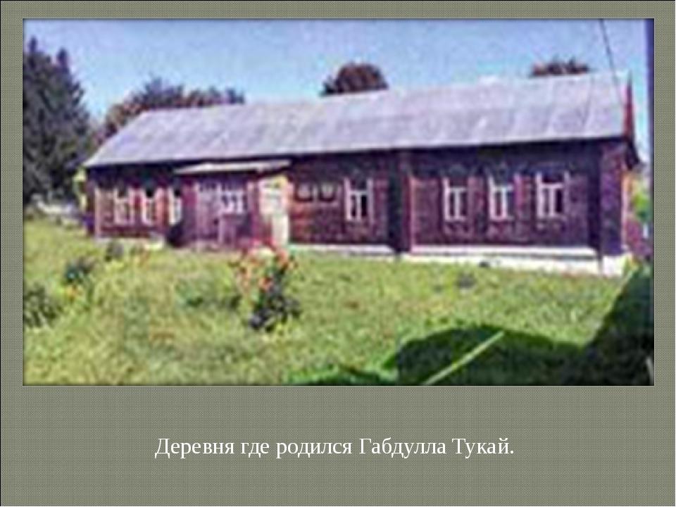 Деревня где родился Габдулла Тукай.