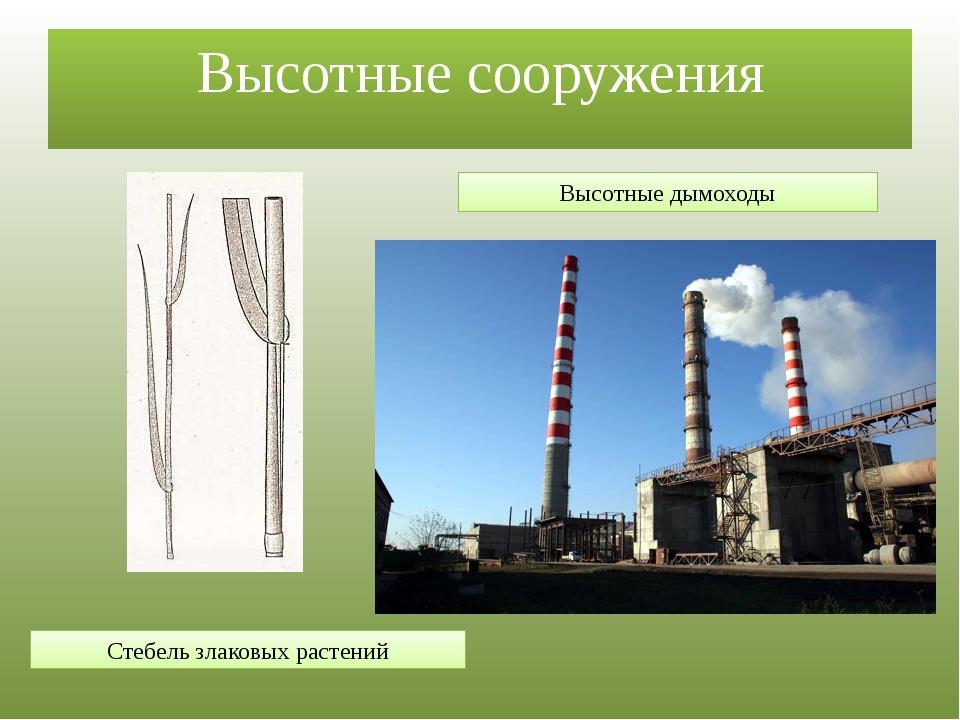 Высотные сооружения Стебель злаковых растений Высотные дымоходы