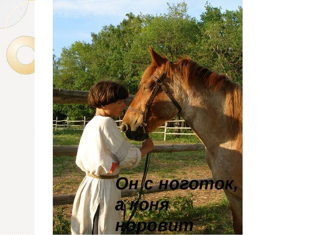 Он с ноготок, а коня норовит Сам из ухаба поднять