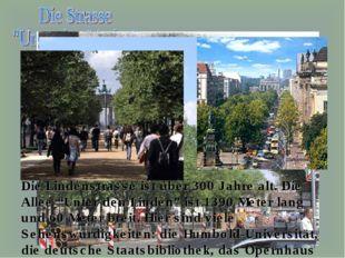"""Die Lindenstrasse ist über 300 Jahre alt. Die Allee """"Unter den Linden"""" ist 13"""