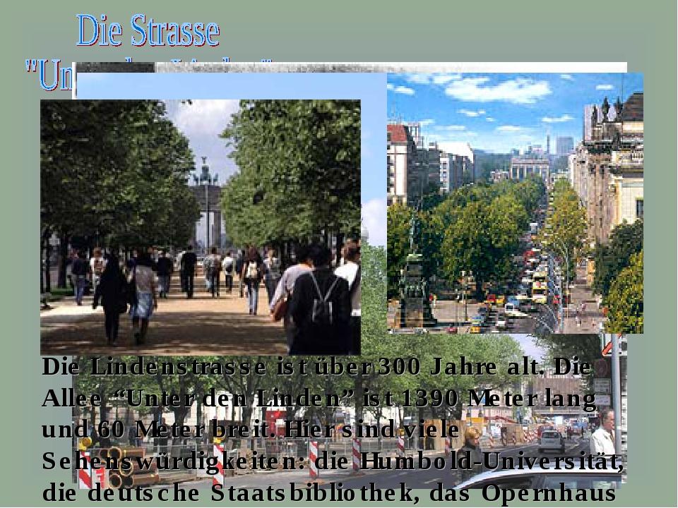 """Die Lindenstrasse ist über 300 Jahre alt. Die Allee """"Unter den Linden"""" ist 13..."""
