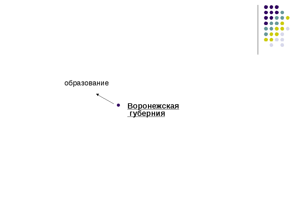 Воронежская губерния образование
