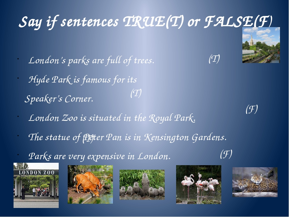 Say if sentences TRUE(T) or FALSE(F) London's parks are full of trees. Hyde P...