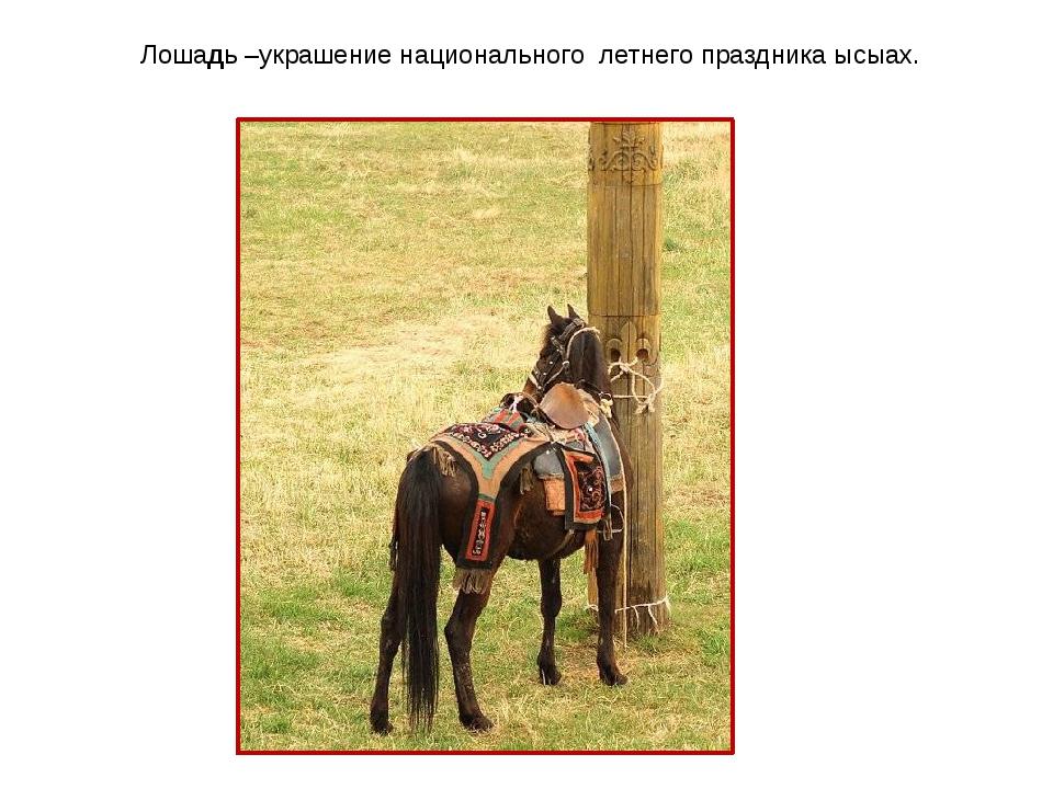 Лошадь –украшение национального летнего праздника ысыах.