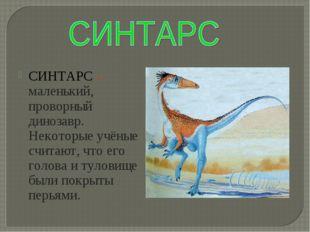 СИНТАРС – маленький, проворный динозавр. Некоторые учёные считают, что его го
