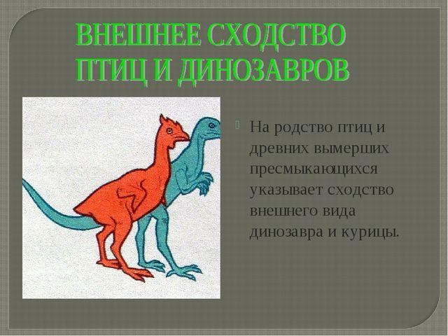 На родство птиц и древних вымерших пресмыкающихся указывает сходство внешнего...