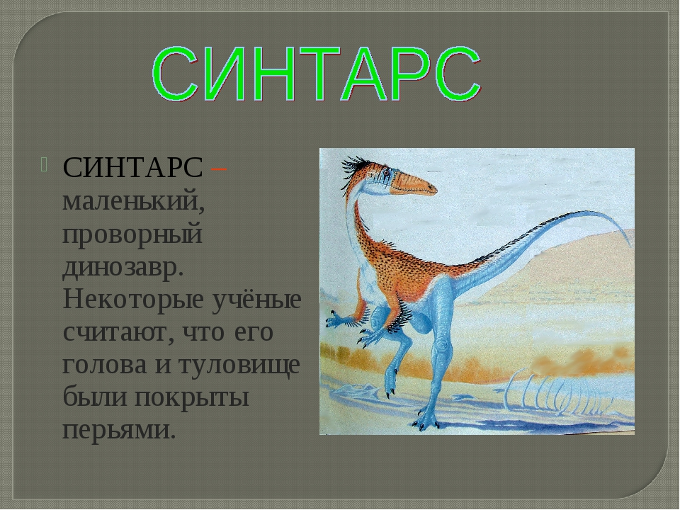 СИНТАРС – маленький, проворный динозавр. Некоторые учёные считают, что его го...