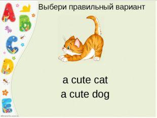 Выбери правильный вариант a cute dog a cute cat