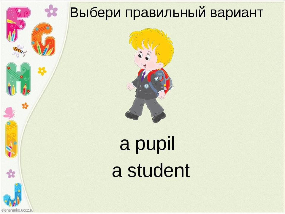 Выбери правильный вариант a student a pupil