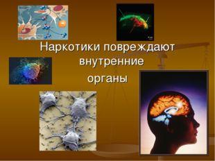 Наркотики повреждают внутренние органы