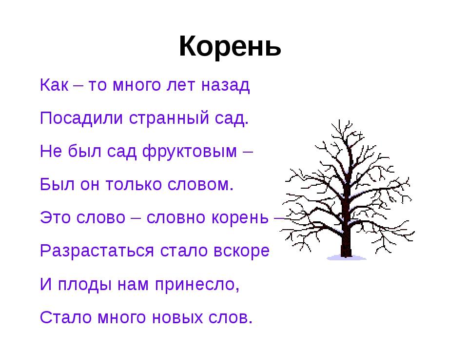 Корень Как – то много лет назад Посадили странный сад. Не был сад фруктовым –...