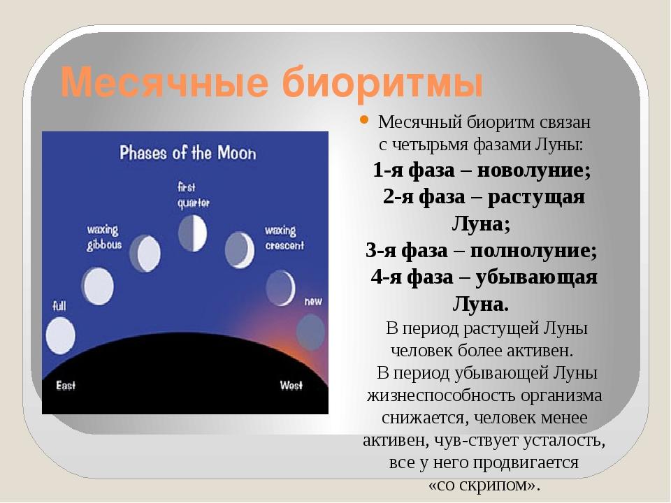 Месячные биоритмы Месячный биоритм связан счетырьмя фазами Луны: 1-я фаза –...
